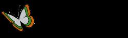 Homepage Trans